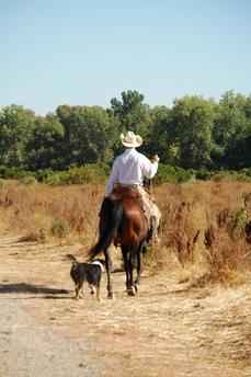 Guardians of the Range:  Protected Ranch Blends Habitat Needs