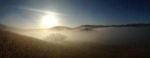 Early-Morning-Fog-Christy-Wyckoff-Carmel